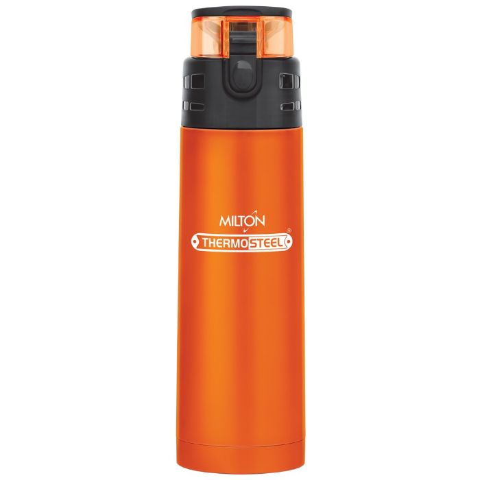 Milton Atlantis 600 Thermosteel Water Bottle